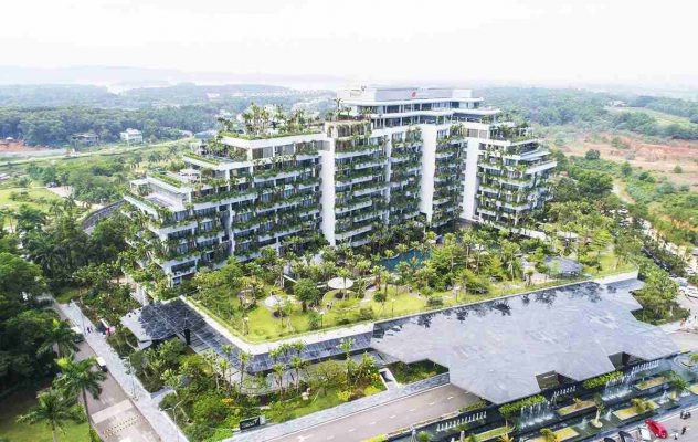 Forest in the Sky Villas
